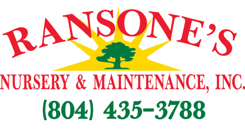 Ransone's Nursery & Maintenance, Inc.
